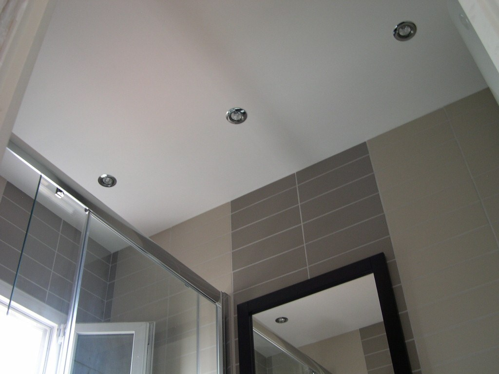 renovel salle de bain bois colombes faux plafond avec spots. Black Bedroom Furniture Sets. Home Design Ideas